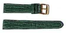 bracelet-montre-djcb-requin-veritable-vert20-Bracelet montre requin bombé  :: + infos - Devis
